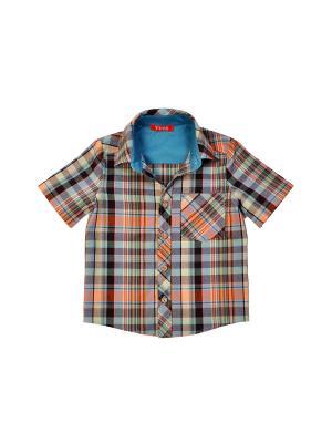 Рубашка VEAS. Цвет: серо-голубой,розовый,горчичный