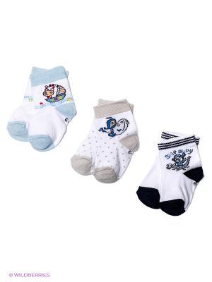 Носки PERA MAYA. Цвет: черный, светло-голубой, серый