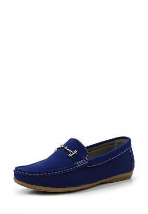Мокасины WS Shoes. Цвет: синий