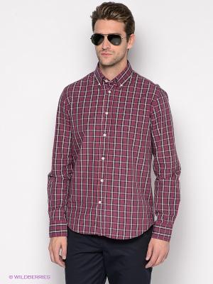 Рубашка ARROW. Цвет: бордовый, коричневый