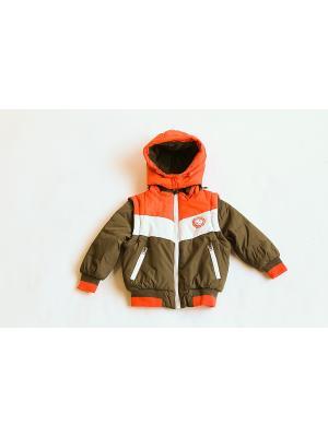 Куртка Iota. Цвет: хаки