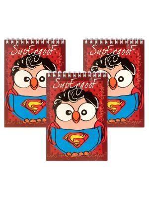 Набор 3 блокнота с совой Супергуф Goofi. Цвет: красный