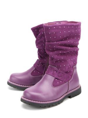Сапоги DITOP. Цвет: фиолетовый