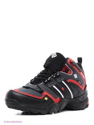 Ботинки EDITEX. Цвет: серый, красный