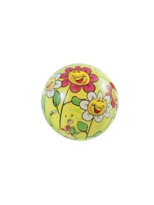 Мяч подарочный La Pastel. Цвет: желтый, зеленый, розовый