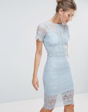 Body Frock Облегающее кружевное платье миди с короткими рукавами Bodyfrock. Цвет: синий