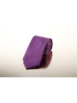 Галстук BAZIONI. Цвет: фиолетовый
