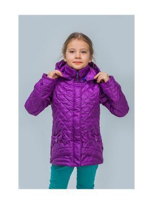 Куртка Пралеска. Цвет: фиолетовый