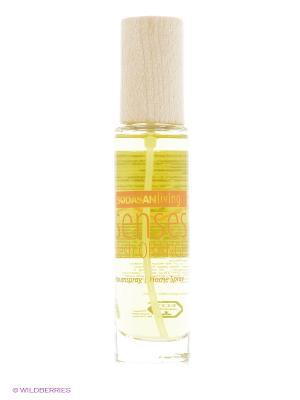 Ароматизатор воздуха Апельсин Sodasan. Цвет: прозрачный