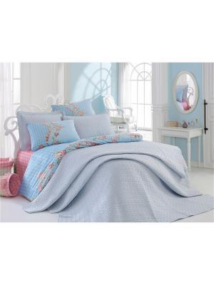 Постельное белье Cotton Box. Цвет: синий, бирюзовый, зеленый, розовый, фиолетовый