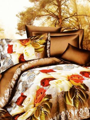 Комплект постельного белья Brend Букет Роз La Pastel. Цвет: коричневый, красный