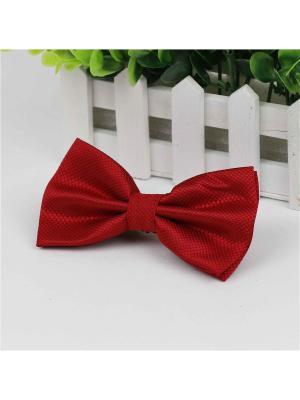 Галстук-бабочка Churchill accessories. Цвет: бордовый, красный, малиновый