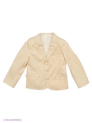 Пиджак Милашка Сьюзи. Цвет: бежевый