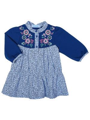 Платье Бимоша. Цвет: синий, голубой