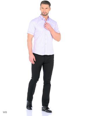 Рубашка мужская CARAT.. Цвет: сиреневый