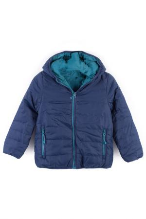 Куртка Coccodrillo. Цвет: темно-синий, бирюзовый