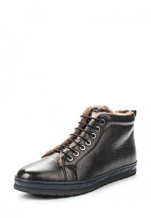 Ботинки Rosconi. Цвет: черный