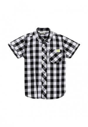 Рубашка Piazza Italia. Цвет: черно-белый