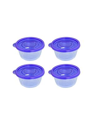Набор из 4-х контейнеров  120 мл. XEONIC CO LTD. Цвет: прозрачный, синий