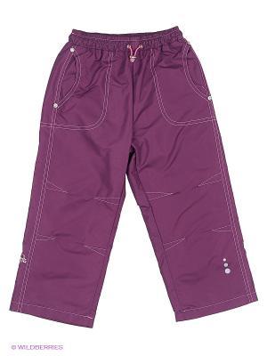 Брюки SAIMA. Цвет: фиолетовый