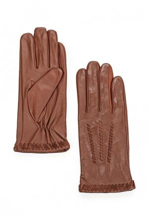Перчатки Dorothy Perkins. Цвет: коричневый