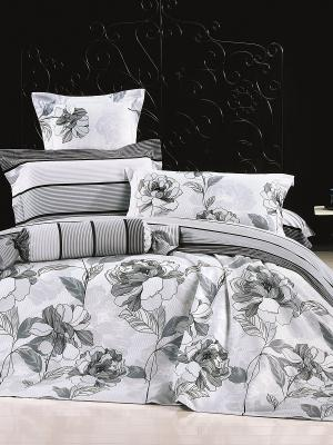 Комплект постельного белья 2 сп. сатин, рисунок 674 LA NOCHE DEL AMOR. Цвет: серый