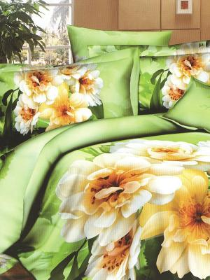 Комплект постельного белья Sofi de Marko. Цвет: светло-зеленый, оранжевый