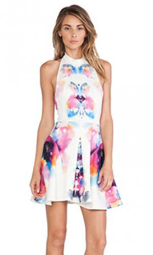 Платье Ringuet. Цвет: кремовый