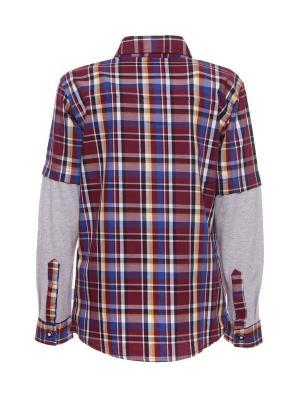 Рубашка DAMY-M. Цвет: бордовый