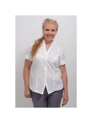Блуза Ванилла LINO RUSSO. Цвет: белый