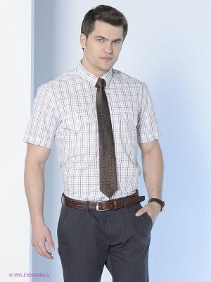 Рубашка Maestro. Цвет: белый, коричневый, голубой