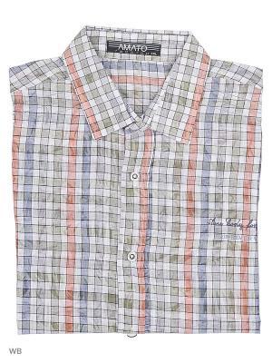 Рубашка AMATO. Цвет: голубой, белый, оливковый