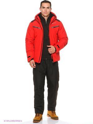 Куртка Stayer. Цвет: красный, черный, серый