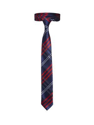 Стильный галстук Аристократ из Кинлохберви в шотландскую клетку Signature A.P.. Цвет: синий, красный