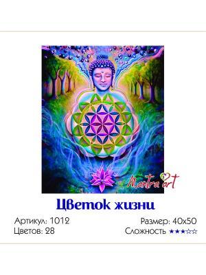 Живопись на холсте Цветок жизни + диск в подарок MantraArt. Цвет: белый