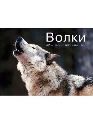Волки. Хищные и свободные Издательство КоЛибри. Цвет: белый