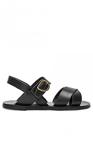 Сандалии little socrates Ancient Greek Sandals. Цвет: черный