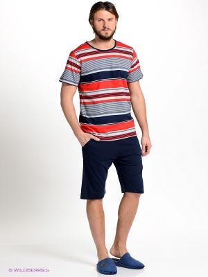 Комплект Vienetta Secret. Цвет: темно-синий, серый, красный