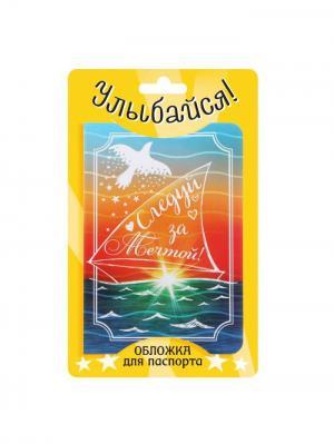 Обложка для паспорта Bizon. Цвет: оранжевый