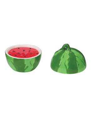 Picnic Party Watermelon Набор солонка и перечница BOSTON. Цвет: зеленый