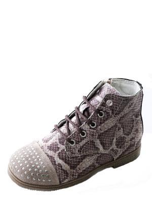 Ботинки для  девочки PRIMIGI. Цвет: коричневый