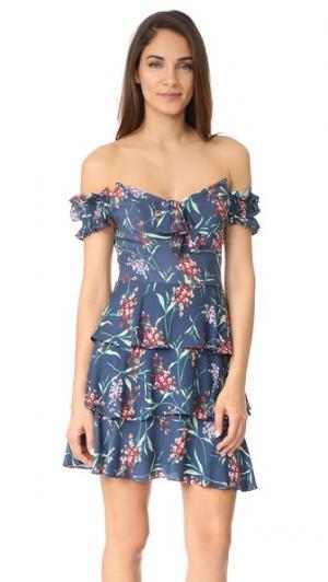 Многоярусное платье Rayan с открытыми плечами WAYF. Цвет: темно-синий цветочный принт