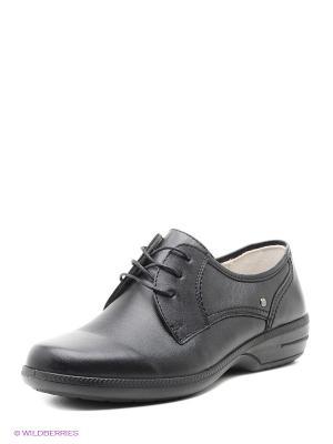 Ботинки Marko 3371/Черный