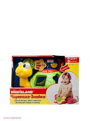 Игровая каталка Черепаха-знайка Kiddieland. Цвет: зеленый, красный, желтый