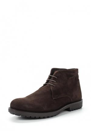 Ботинки Made in Italia. Цвет: коричневый