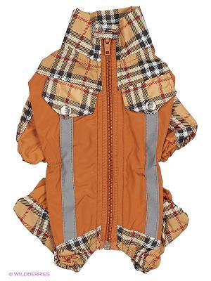 Дождевик холодный (Йоркширский терьер №1) ТУЗИК. Цвет: коричневый