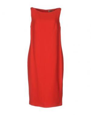 Платье до колена GAI MATTIOLO. Цвет: красный