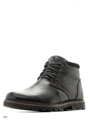Ботинки Spur. Цвет: черный
