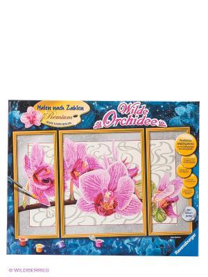 Раскраска по номерам Орхидея Ravensburger. Цвет: синий