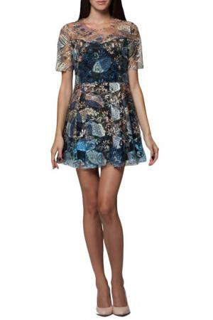Платье JOELLE YOUNG JO'ELLE. Цвет: multicolor